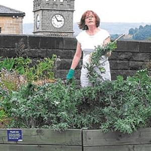Pam Warhurst: How we can eat our landscapes