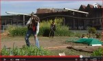 Documentaire Urban Agriculture